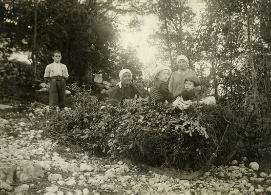 La slitta col fieno ai Scànuceri di Scanuppia - © Archivio Danilo Battisti